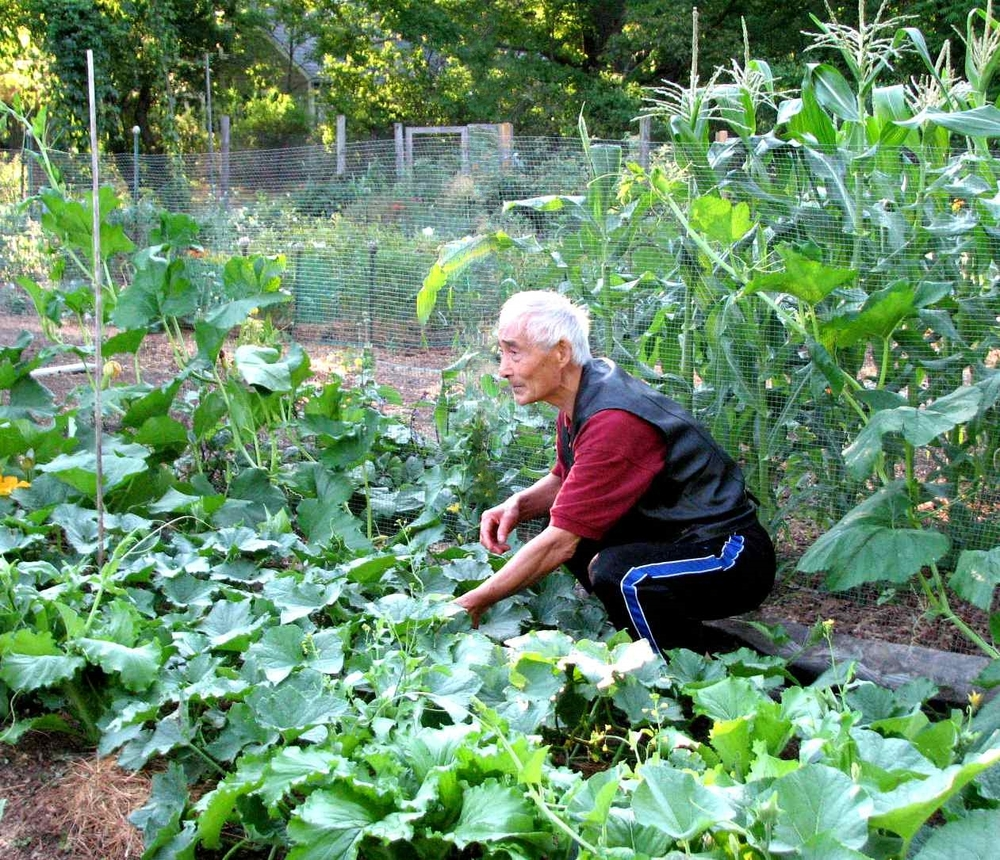 CommunityGarden20166.jpg