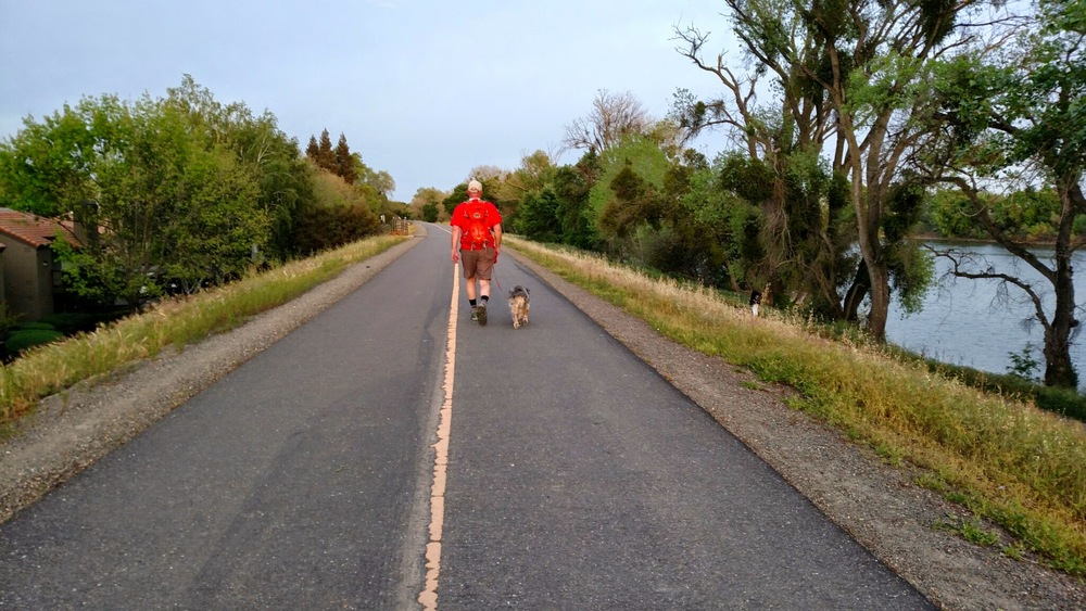 Walking our dog on the Sacramento River Bike Trail. www.chibeingchi.com