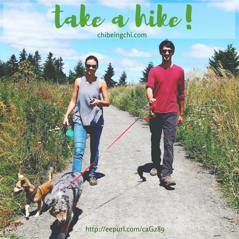 take a hike. Portland, Oregon. 2016.