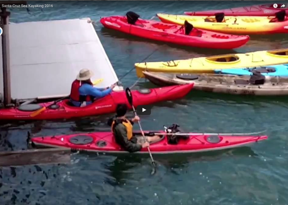 Sea Kayaking in Santa Cruz. California.  http://www.cityofsantacruz.com/visiting/santa-cruz-whar