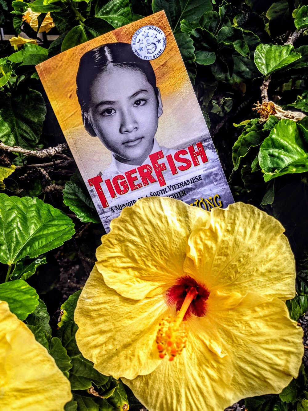 TigerFish, a memoir