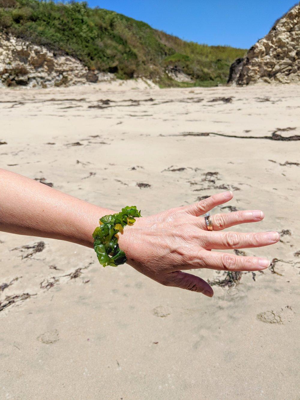 Seaweed Jewelry