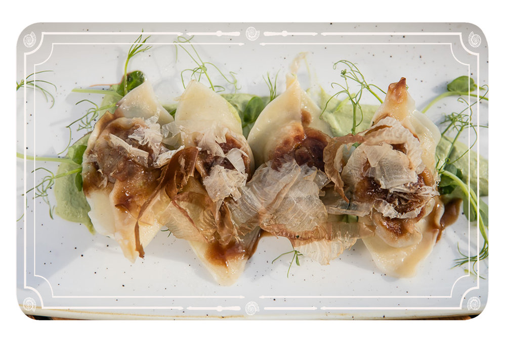 wagyu dumplings website.jpg