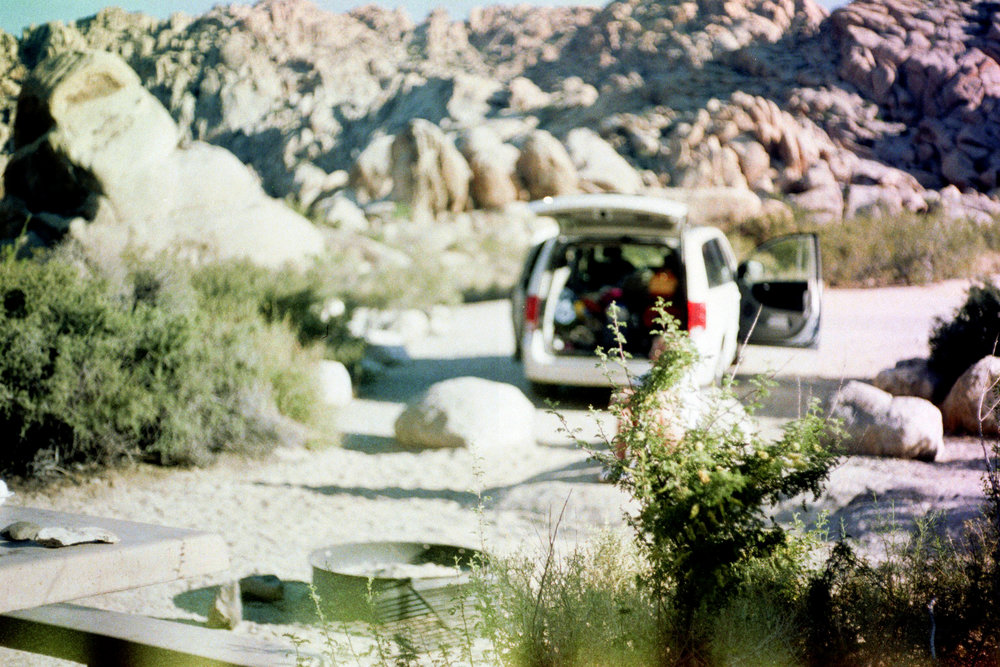 Joshua Tree National Park, California  35mm film