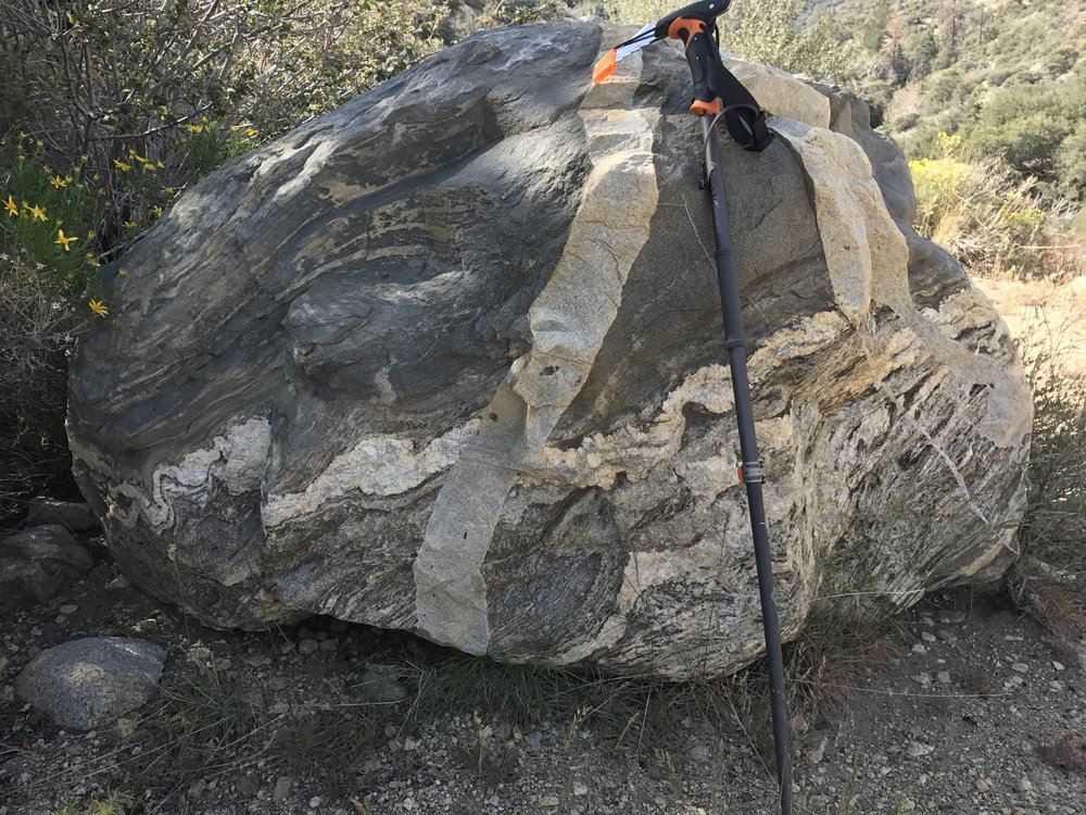 """Is it """"mind of steel"""" or """"mind of ROCK""""? Stumbled upon this awesome boulder...I call it the """"Brain Rock!"""""""