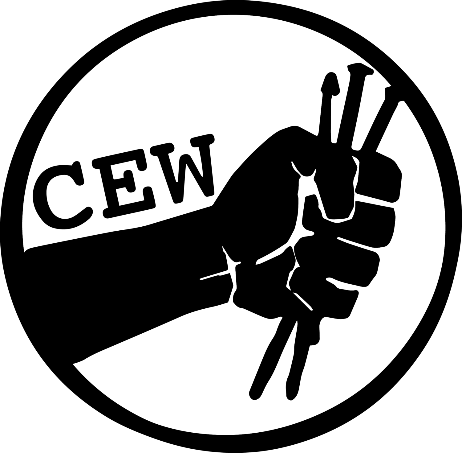CEW Design Studio