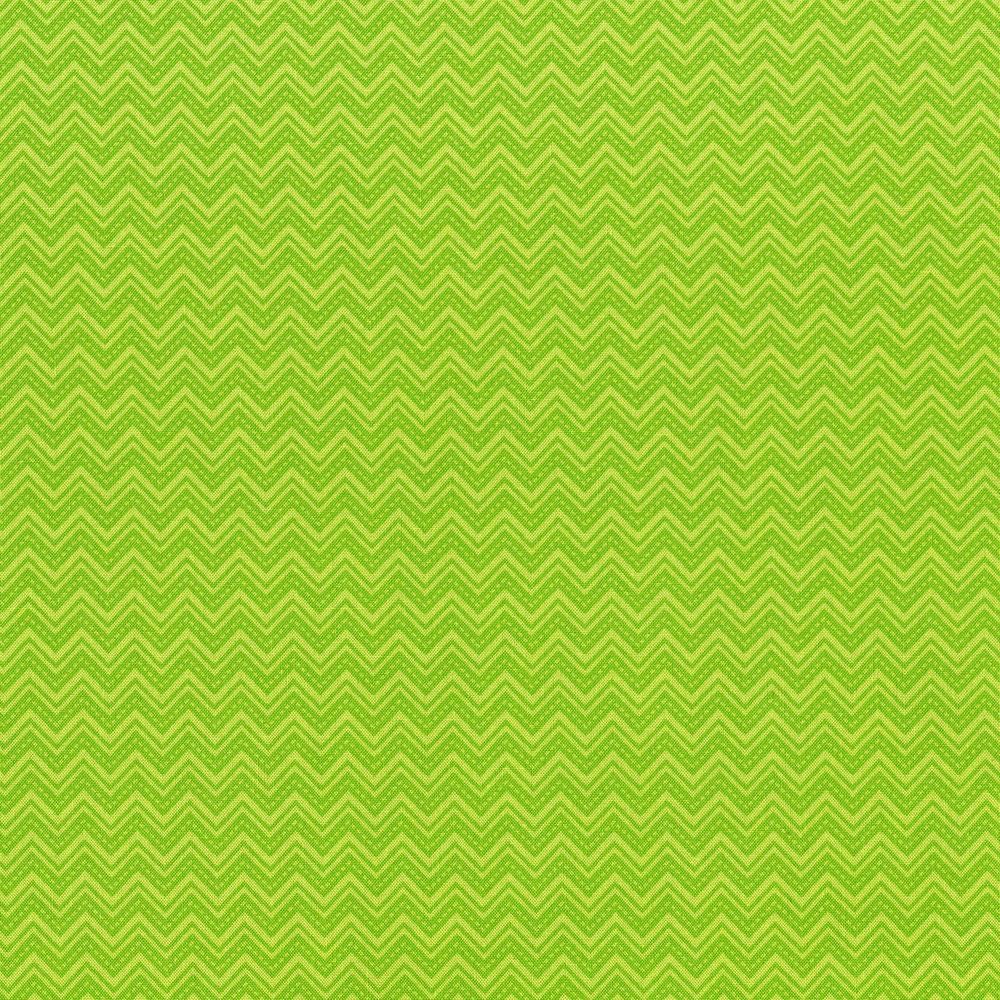 3031-003 DIGGITY ZIGGITY-SLIME GREEN