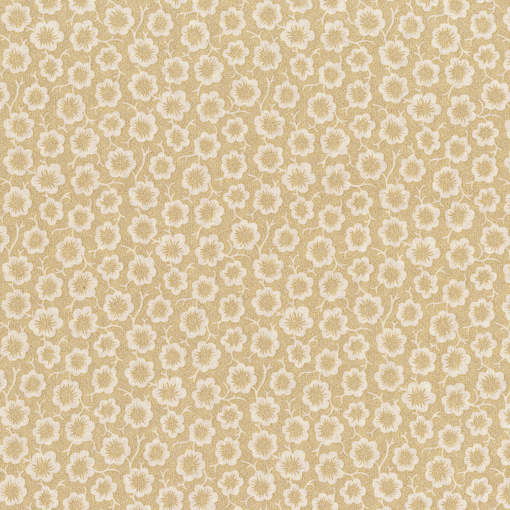3058-003 SIMPLE BLOOM-CREAM