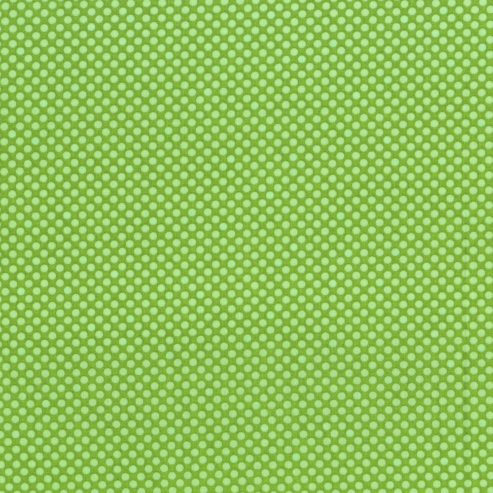 2961-007  DOT COM-APPLE GREEN