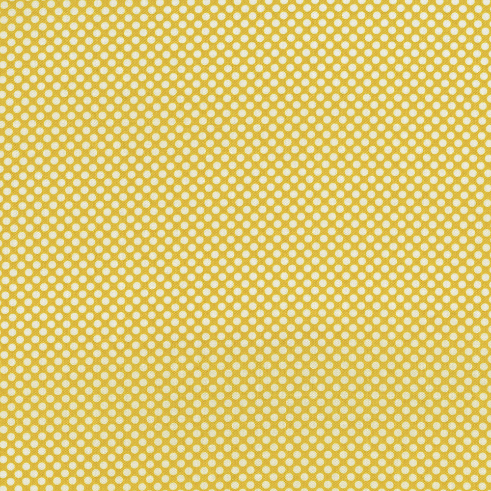 2961-009    DOT COM-LEMON