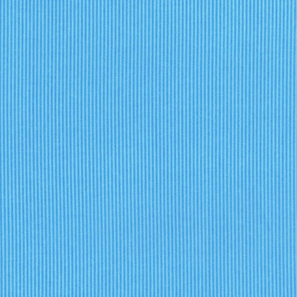 2960-017 OCEAN VIEW