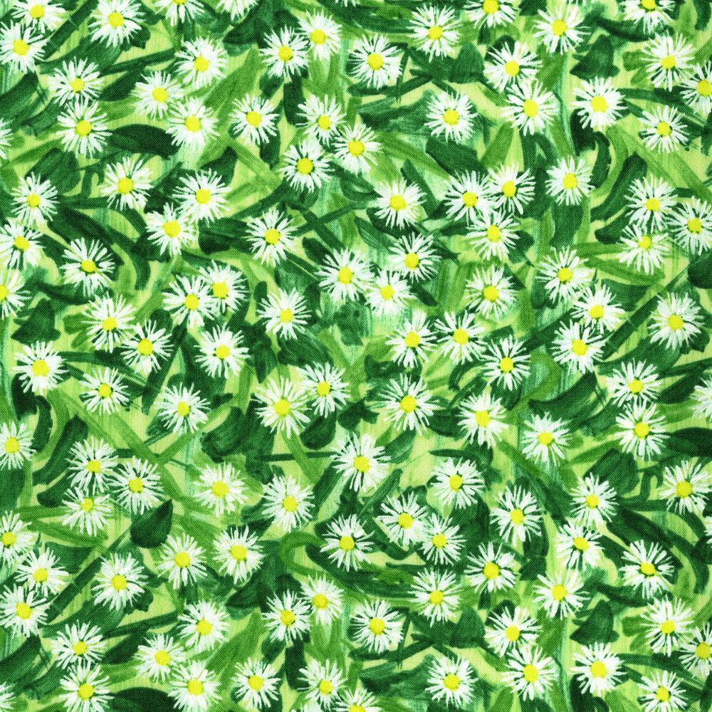 2945-002 FLOWERING FIELD - SPRING