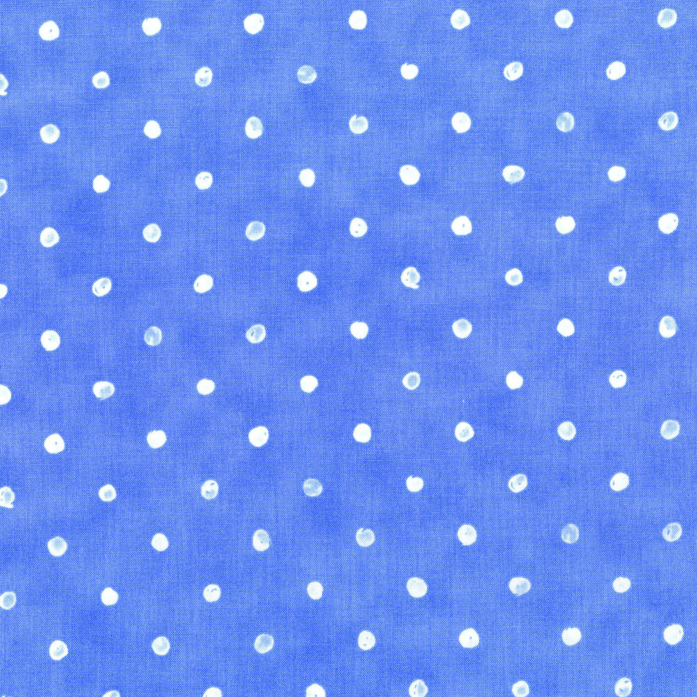 2953-003 DARLING DOTS - BLUE SKY