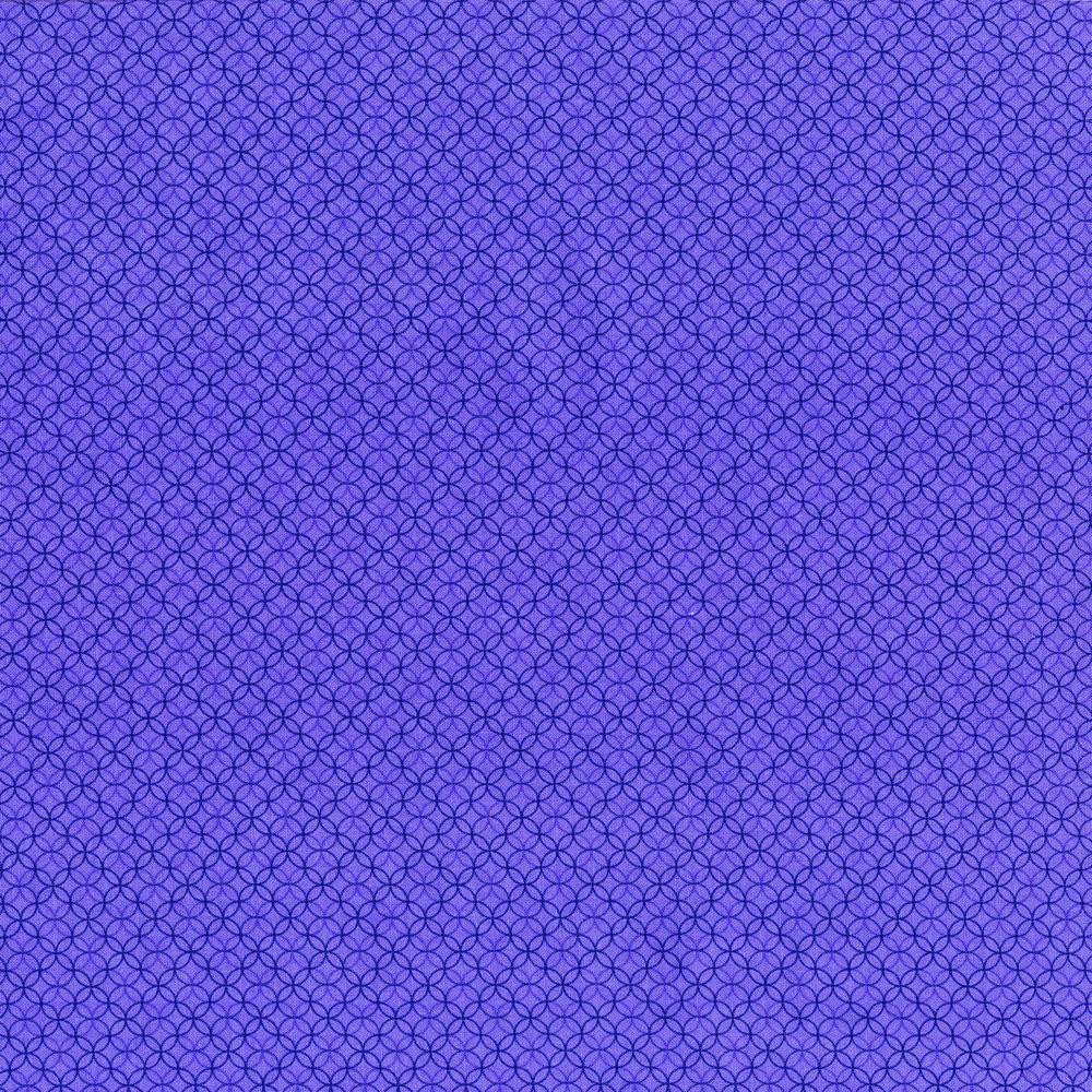 2921-004 ROXBURY - IRIS