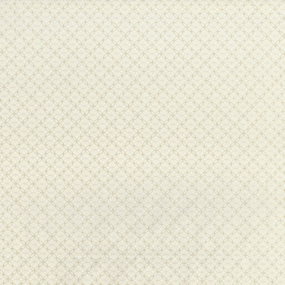 2921-006 ROXBURY - MAGNOLIA