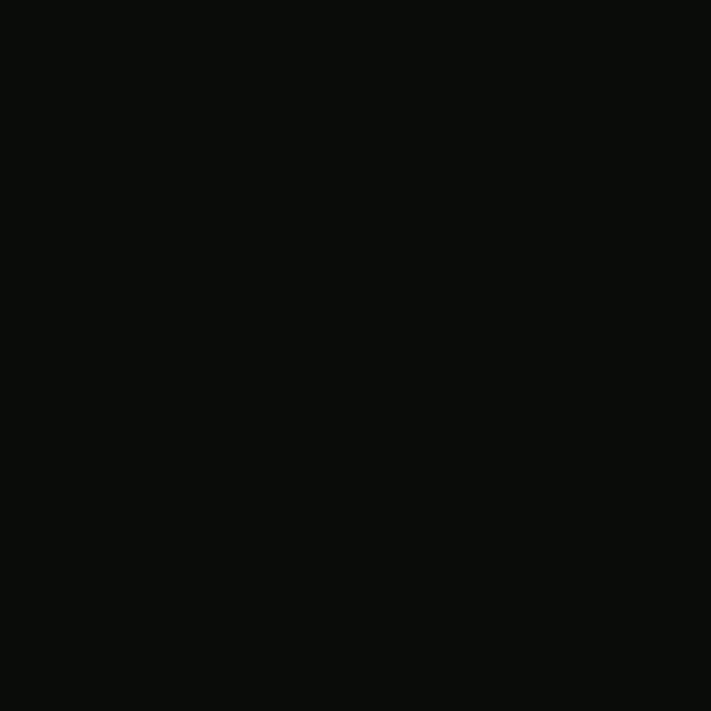 9610-003 ONYX