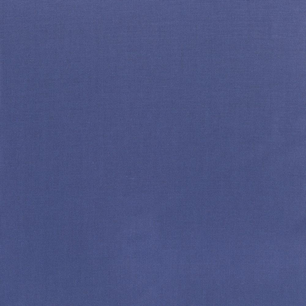 9617-169 HAVILAND BLUE