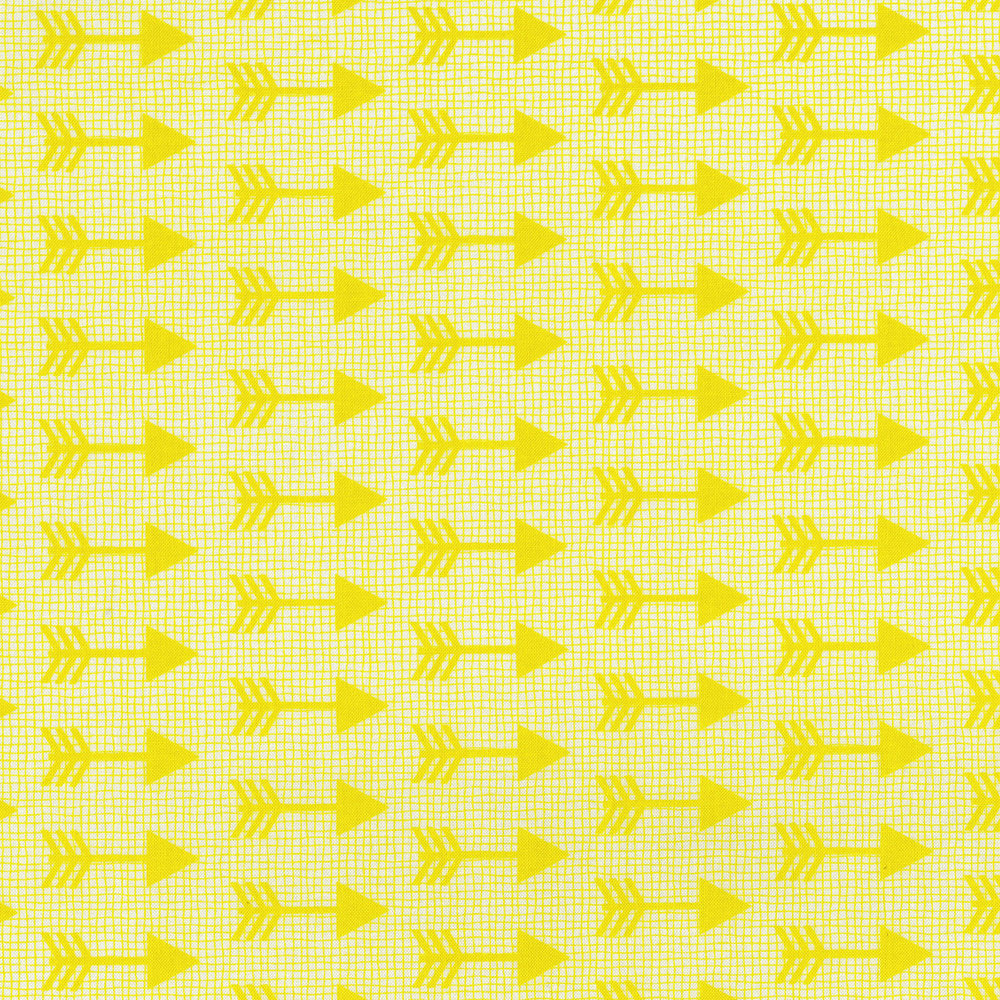 3335-002  ARROWS-YELLOW