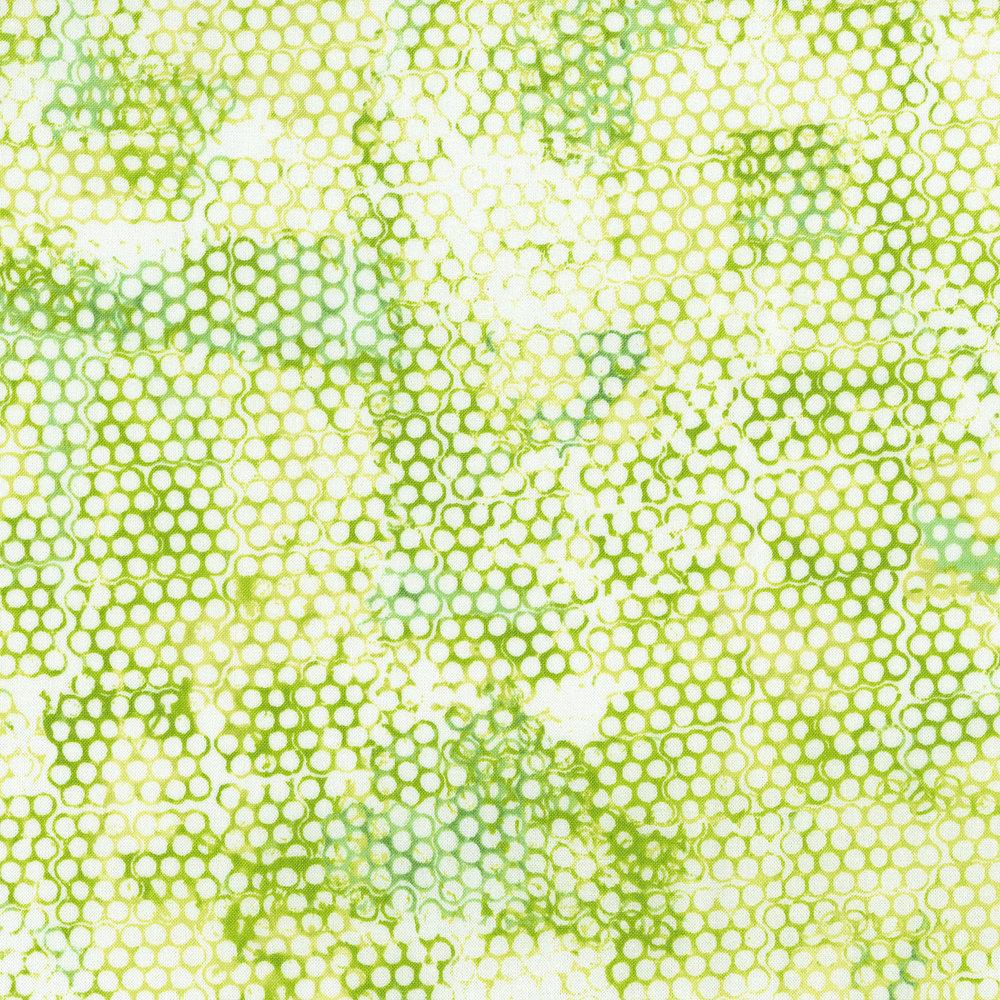 3363-002 BEE POLLEN-CREEPING THYME