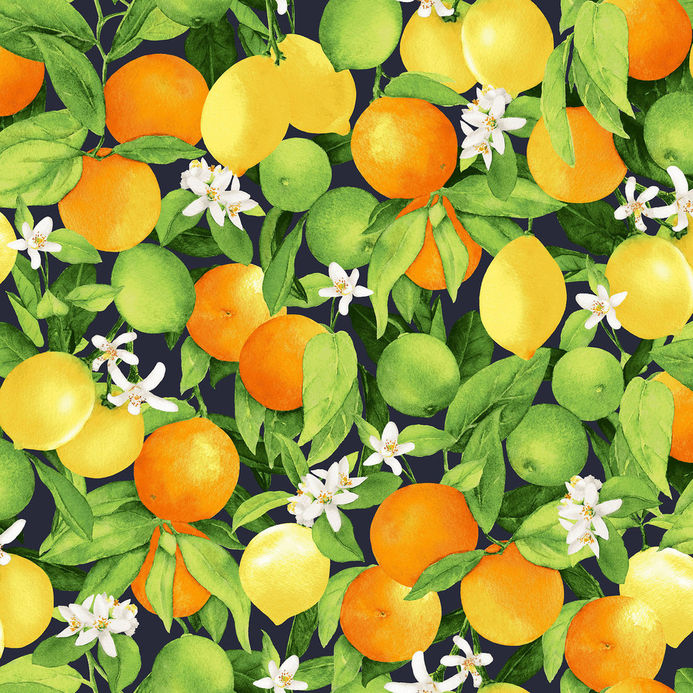3556-001  CITRUS GROVE-MIDNIGHT