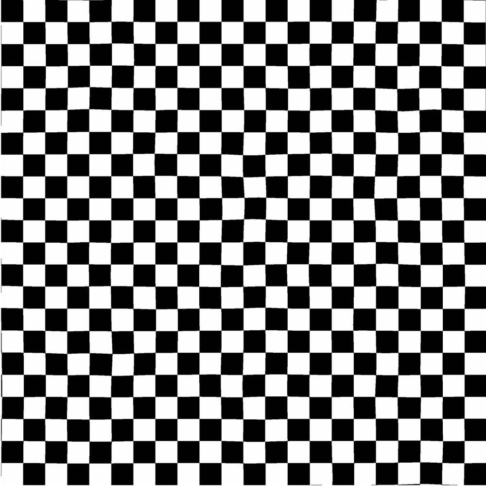 3408-001 CHECK-BLACK &WHITE
