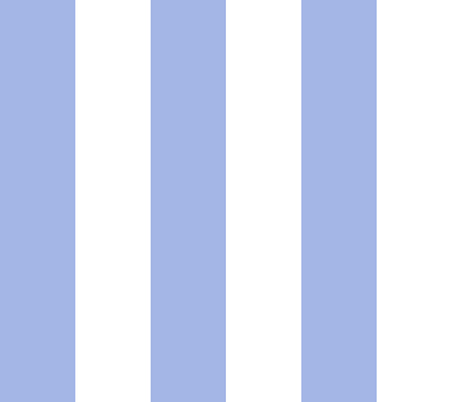 vf201bl2_chic_stripe_blue