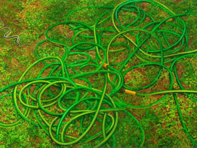 Catherine Murphy The Grass, 2011 Image courtesy of the artist and Peter Freeman Gallery, New York.