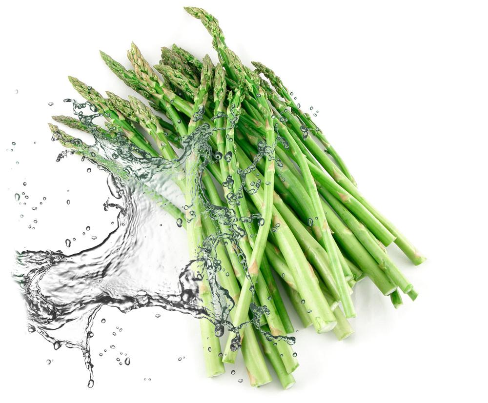 Asparagus |   B rochure