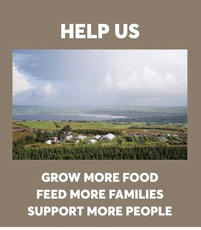 Our brothers and sisters over at @moyhillfarm are on the final days of an amazing crowdfunder campaign. Please take a look and donate if it clicks with you. . We're jumping over the pond next week to hang with this gang and get some insight on community farm life and maybe a few waves en route. 🍀 . . . #csa #community #moyhill #farmlife #veggies #crowdfund #goodpeople #changemakers #agentofchange #future #surfcycle #environment #health #wellbeing