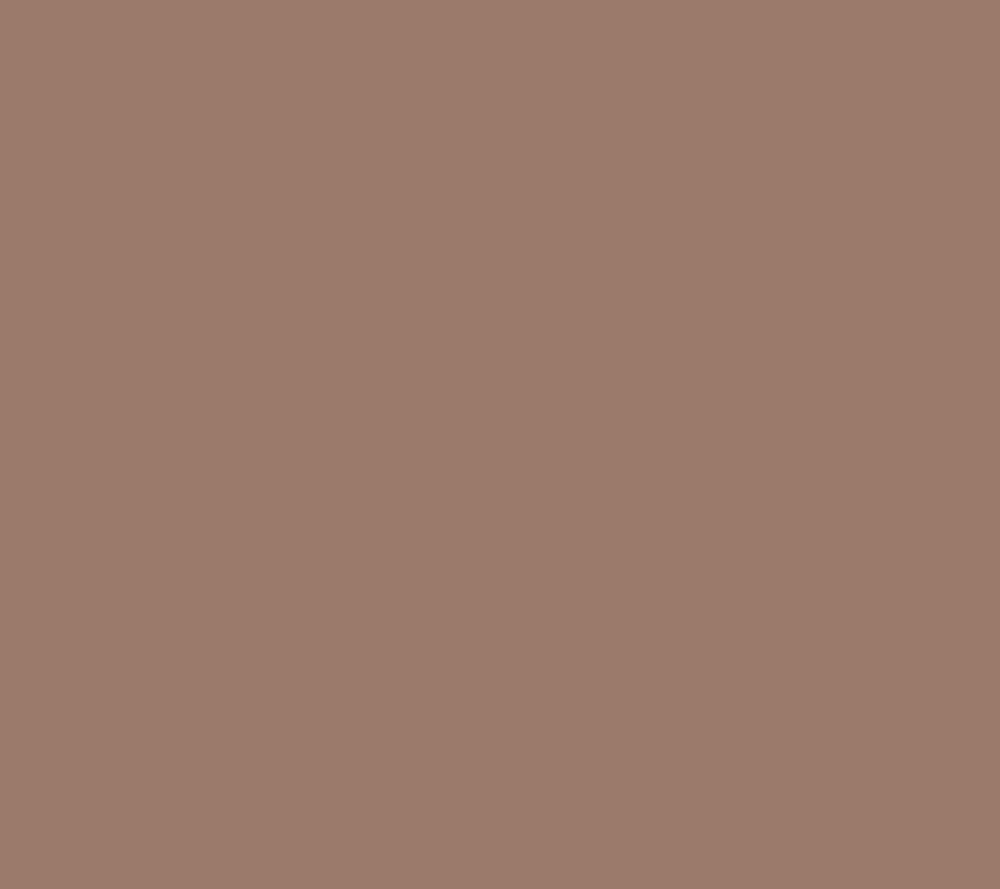 Rame Copper BR1678L