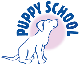 Puppy Training in Dorking and Reigate