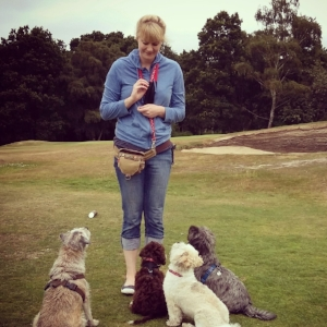 Professional Dog Walker in Reigate
