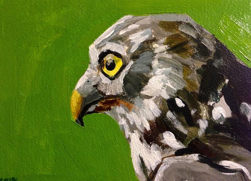 Green-Owl.jpg
