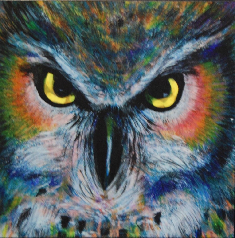 rainbow-owl-1014x1024.jpg