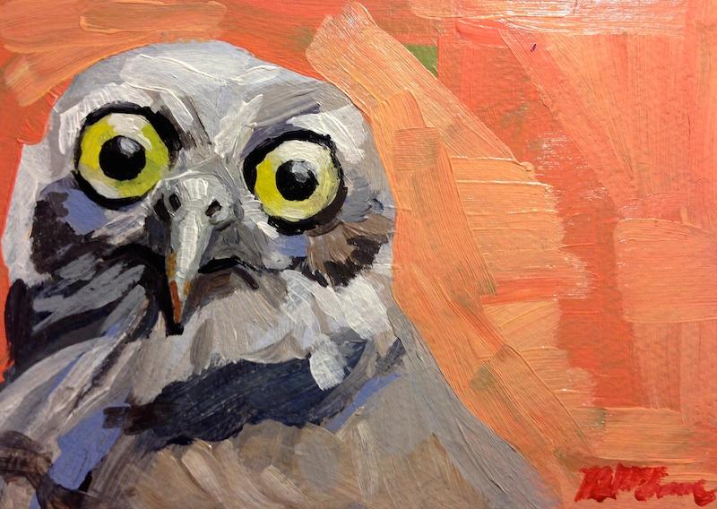 Pink-Owl.jpg