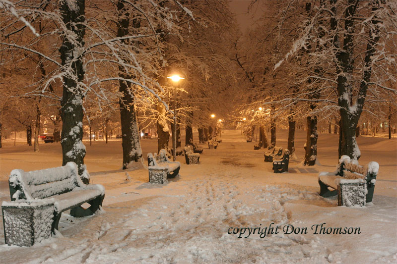 night-winter-scene-victoria-park.jpg