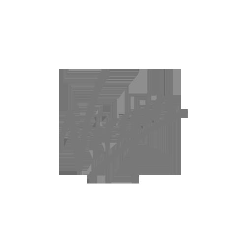 virgin-gray.png