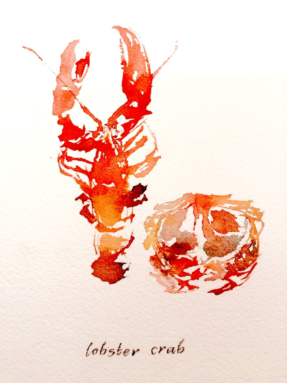 Lobster Crab, 2016