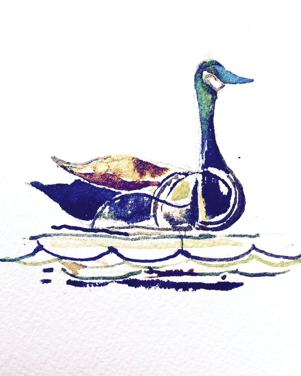 Royal Goose, 2016