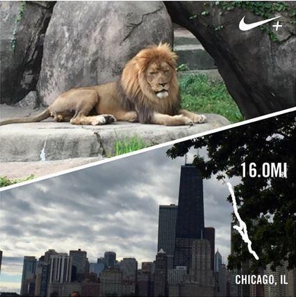 16 miles