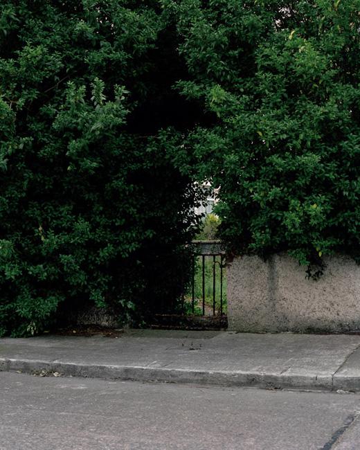 7_trees_house2.jpg