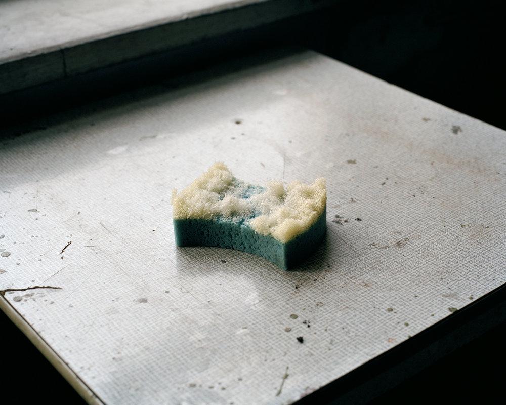 coalstory_sponge_6.jpg