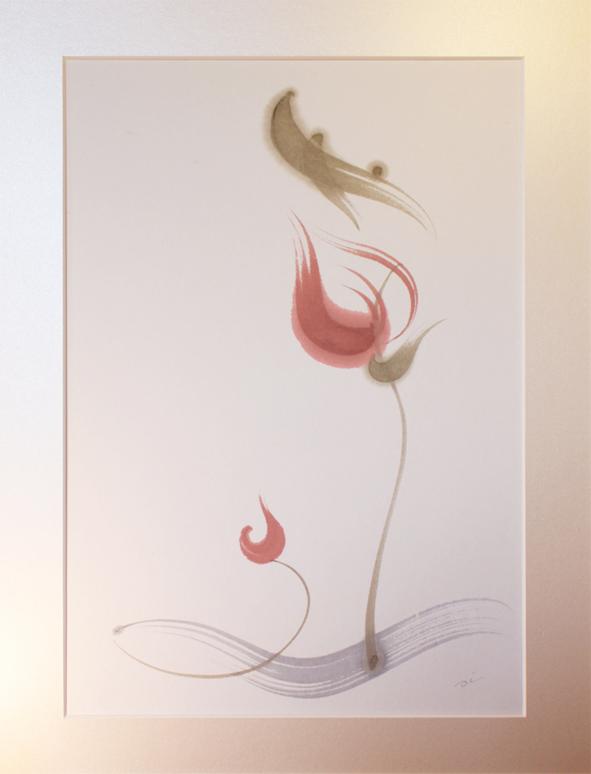 Lotus | 蓮