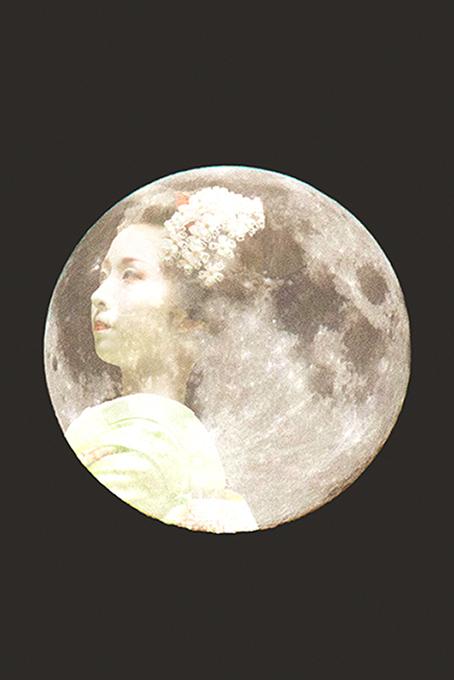 The moon at dawn #8