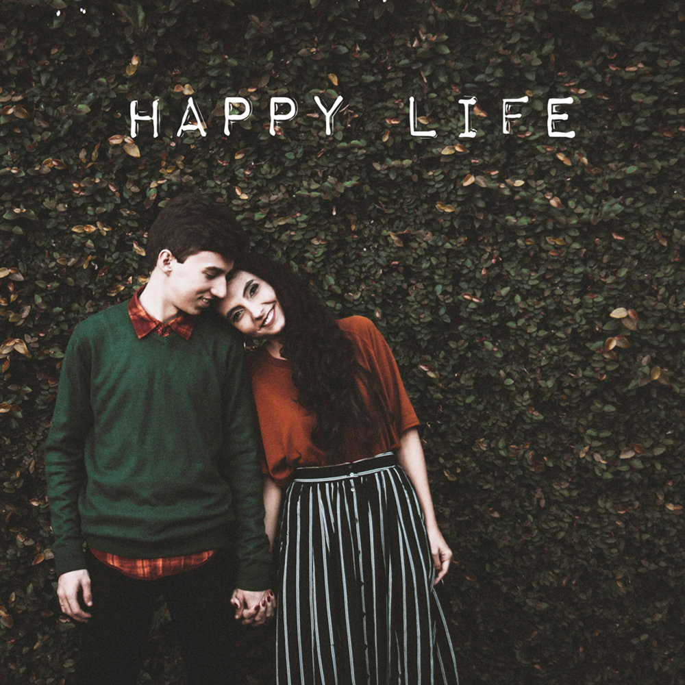 HAPPY LIFE - AMERICANA VOLUME ONE - A new collection of songs for video and media projects, with rustic rambling melodies, organic instrumentation and feel-good energy.