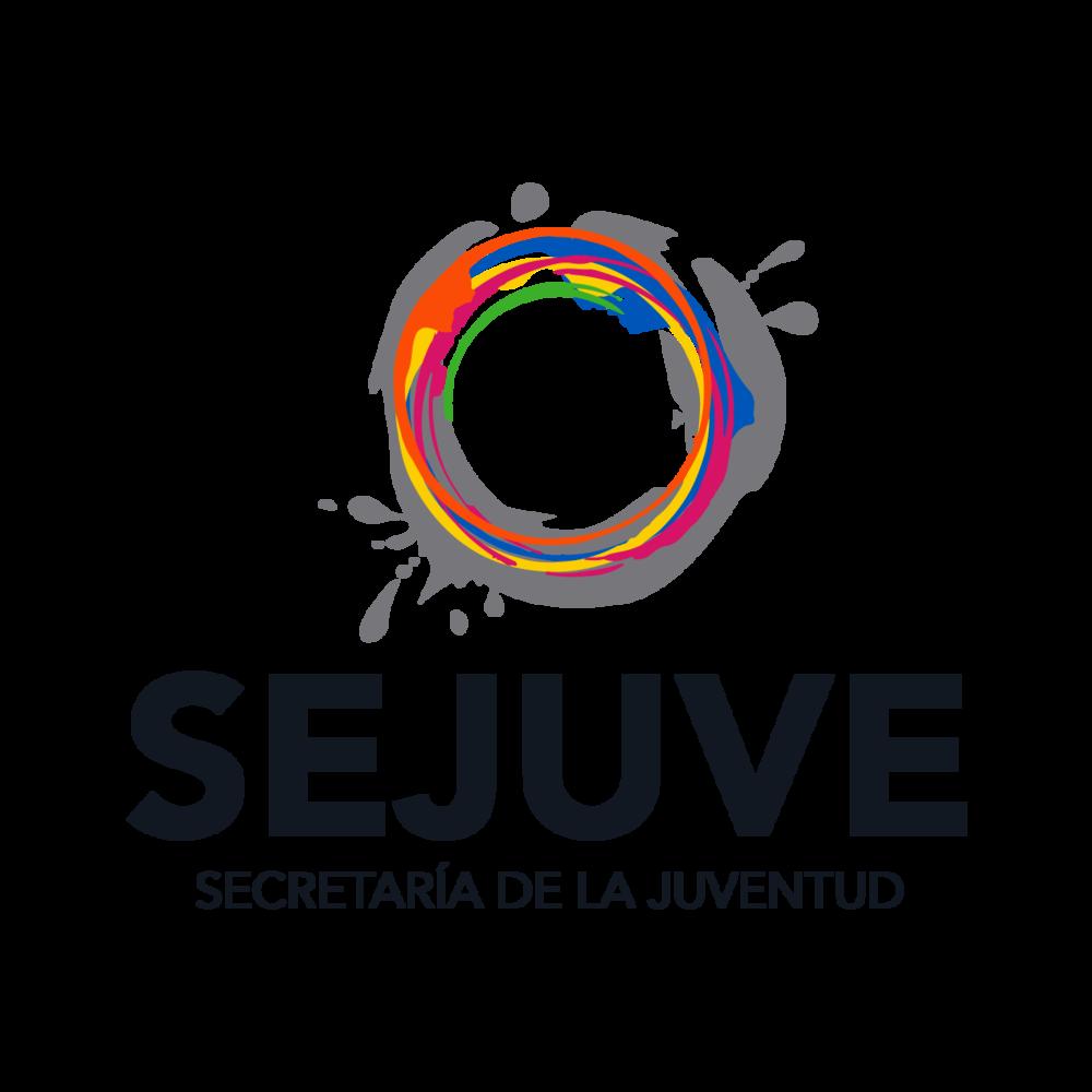 90876982_LOGO Sejuve 2015-2021-01.png
