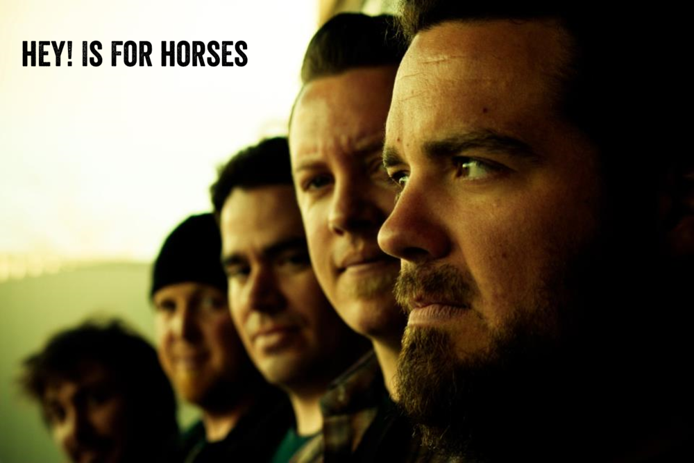 Hey is for Horses.png