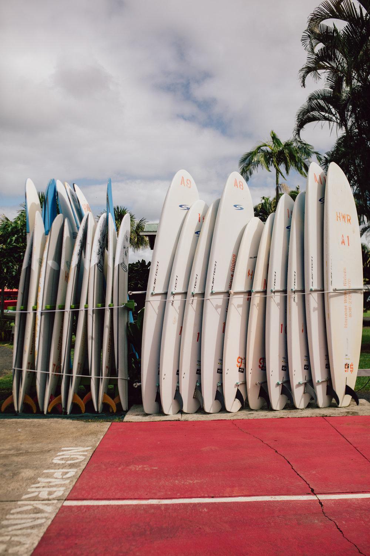 Hawaii_sandy noto-218.jpg