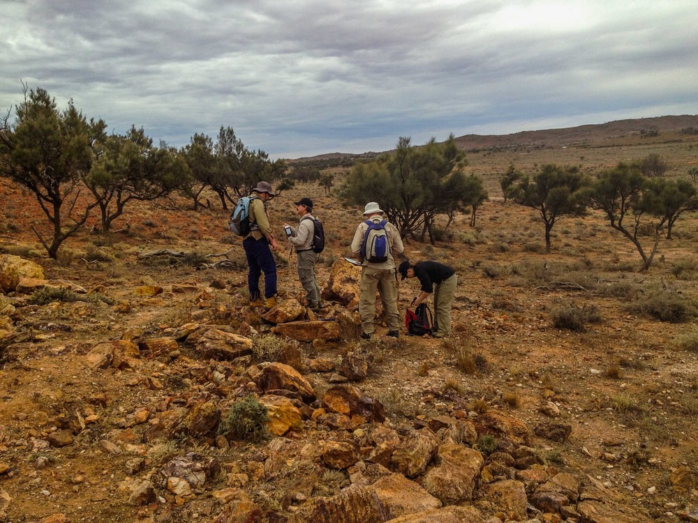 Geologists working at the Thackaringa Cobalt project.