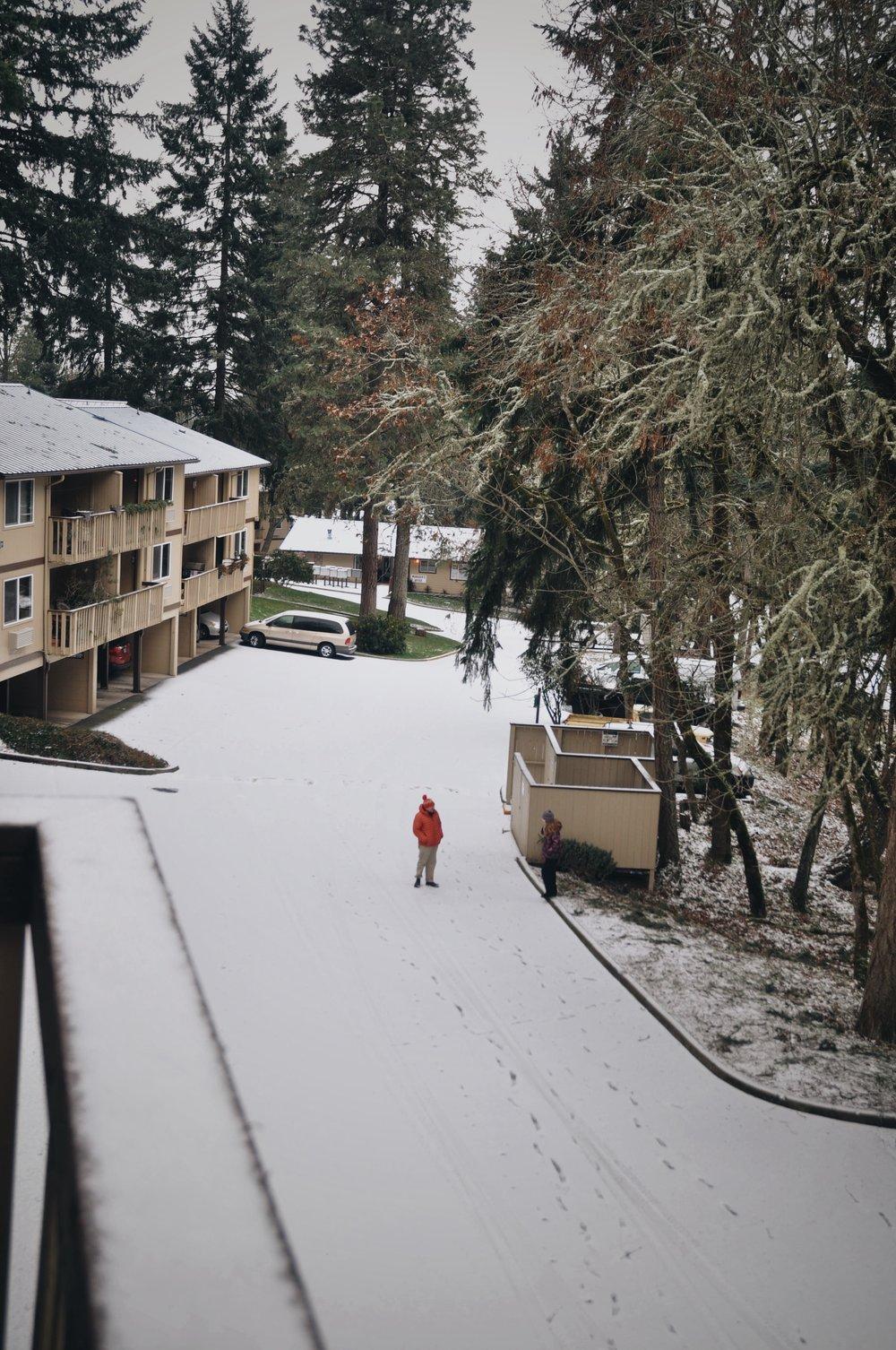 #3 Snowfall.jpg
